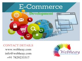Ecommerce Development In India