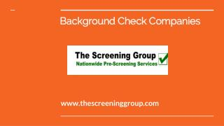 Online Background Check Company | The Screening Group