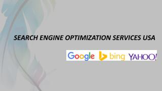 SEARCH ENGINE OPTIMIZATION SERVICES USA
