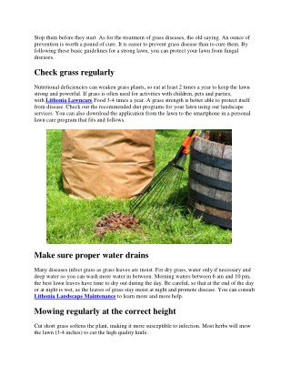 Prevent Lawn & Grass Diseases