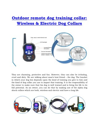 Outdoor remote dog training collar - Wireless & Electric Dog Collars