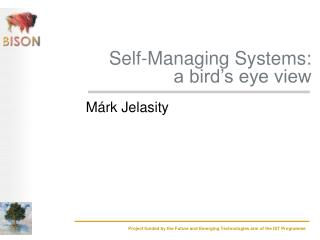 Self-Managing Systems:  a bird's eye view