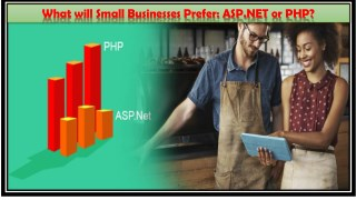 What will Small Businesses Prefer: ASP.NET or PHP?