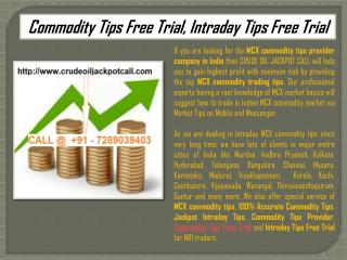 Commodity Tips Free Trial, Intraday Tips Free Trial