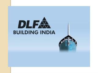 Dlf Builder and Its Projects
