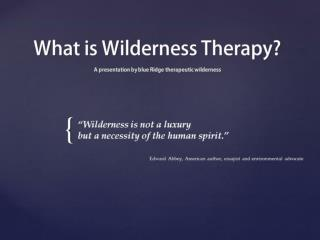 What is Wildernes Therapy