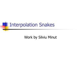 Interpolation Snakes