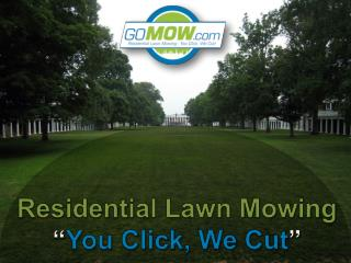 GoMow - Premier Lawn Care services in Texas Areas