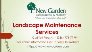 New Garden Landscaping and Nursery