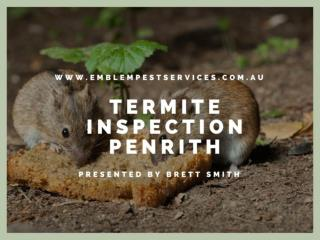 What Is the Essence of Termite Inspection Penrith