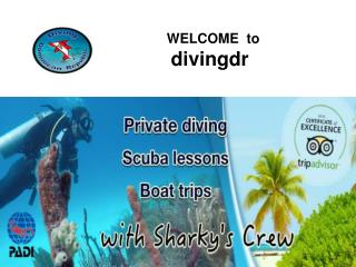 Diving courses Bayahibe