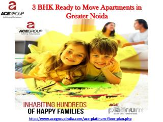 2 BHk Ready to Move Apartments in Greater Noida - Ace Group