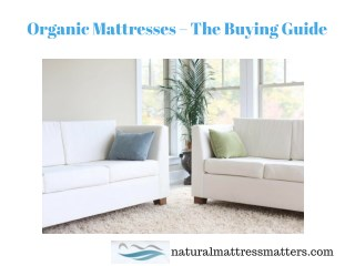 Organic Mattress Buying Guide