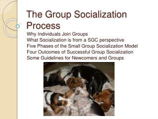 The Group Socialization Process