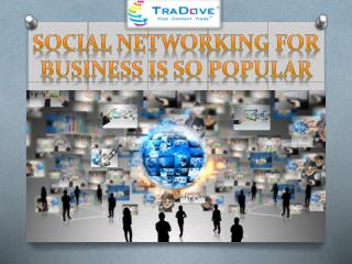 Social Networking For Business Is So Popular