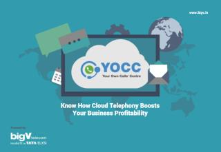 Know How Cloud Telephony Boosts Your Business Profitability