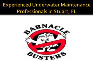 Experienced Underwater Maintenance Professionals in Stuart, FL
