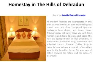 Homestay in The Hills of Dehradun
