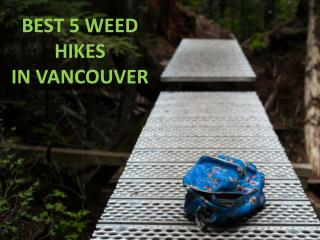 Best 5 weed hikes in Vancouver