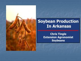 Soybean Production  In Arkansas Chris Tingle Extension Agronomist Soybeans