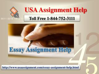Essay Assignment Help | Toll Free 1-844-752-3111