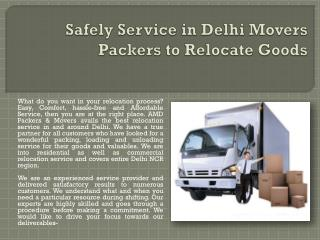 Safely Service in Delhi Movers Packers to Relocate Goods