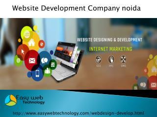 Easily find Website Development Company Noida