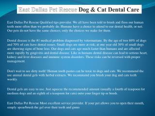East Dallas Pet Rescue You Care with Style with a Dog Poop Bag Holder