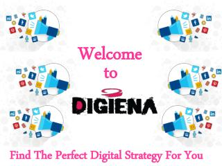 Digiena- The Perfect Digital Strategy