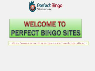 What to look for in a new bingo site