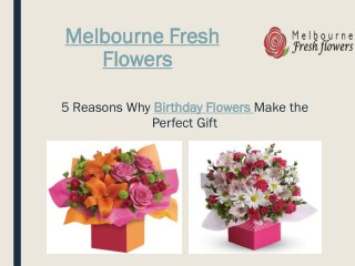 Buy Birthday Flowers to Melbourne Through Melbourne Fresh Flowers