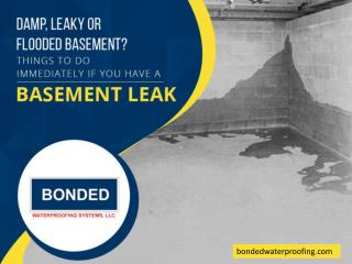 Things to Do Immediately If You Have a Basement Leak
