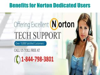 What does Norton Offer to Its Faithful Customers?