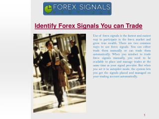 Identify Forex Signals You can Trade