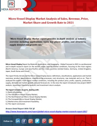 Micro-Vessel Display Market Analysis of Sales, Revenue, Price, Market Share and Growth Rate to 2021