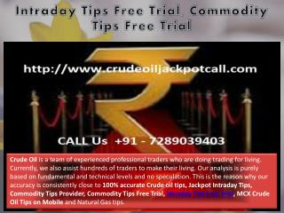 Intraday Tips Free Trial, Commodity Tips Free Trial