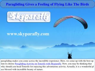 Paragliding gives a feeling of flying like the birds