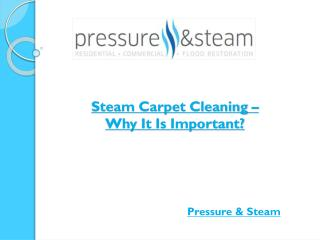 Steam Carpet Cleaning – Why It Is Important?