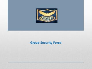 Security Services Provider in Pune – Group Security Force