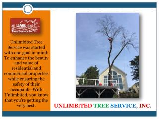 Tree Service Experts, Columbia, MD
