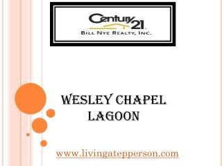 Wesley Chapel Lagoon - livingatepperson.com