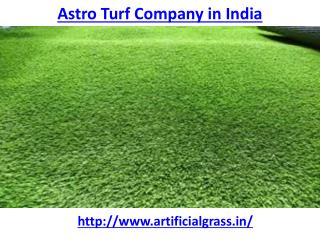 Who is the best astro turf company in India