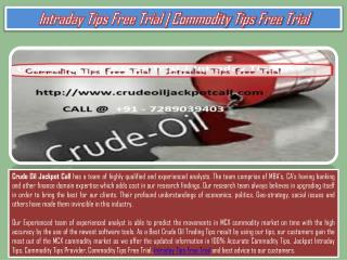 Intraday Tips Free Trial | Commodity Tips Free Trial