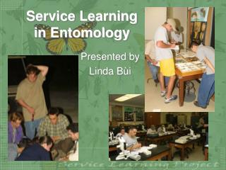 Service Learning  in Entomology