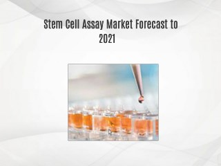 Stem Cell Assay Market Forecast to 2021