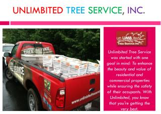 Best Tree Removal in Columbia, Maryland