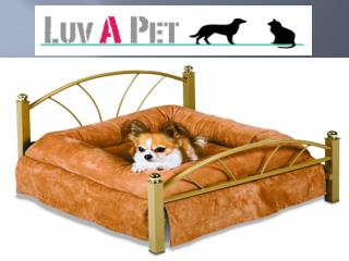 Luv A Pet