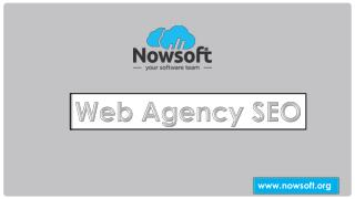 Nowsoft Is The Only Web Agency SEO To Give Flat Pricing