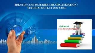 IDENTIFY AND DESCRIBE THE ORGANIZATION / TUTORIALOUTLET DOT COM