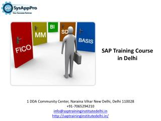 SAP Training Course with Certification in Delhi Institute